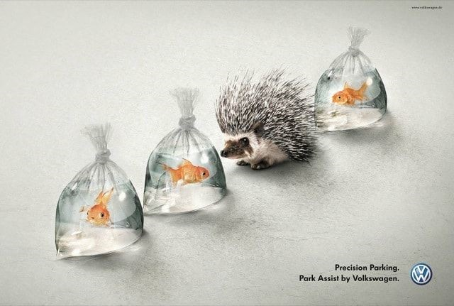 clever volkswagon advert with a hedgehog in a row of fish in plastic bags to promote precision parking