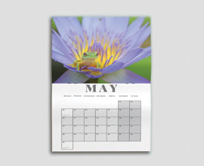 Wall Calendars (Drilled Hole)